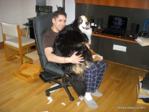 I am a lapdog with laser eyes