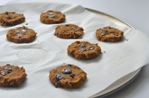 These pumpkin chocolate chip cookies are a healthy fall treat! Sweet and spicy, the entire family will enjoy them. Paleo, ketogenic, refined sugar free, low-carb, gluten-free, grain-free, nut-free.