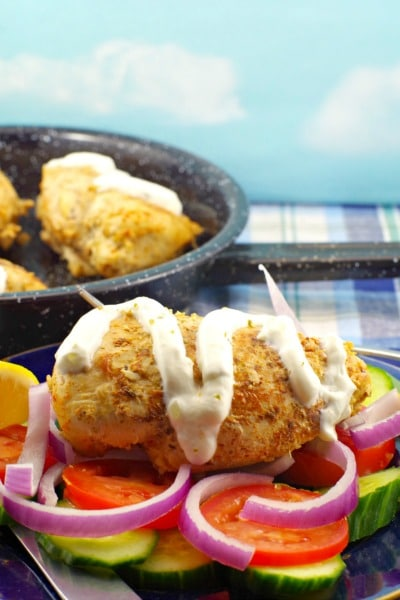Lazy Greek Chicken Souvlaki - Weight Watchers Friendly!