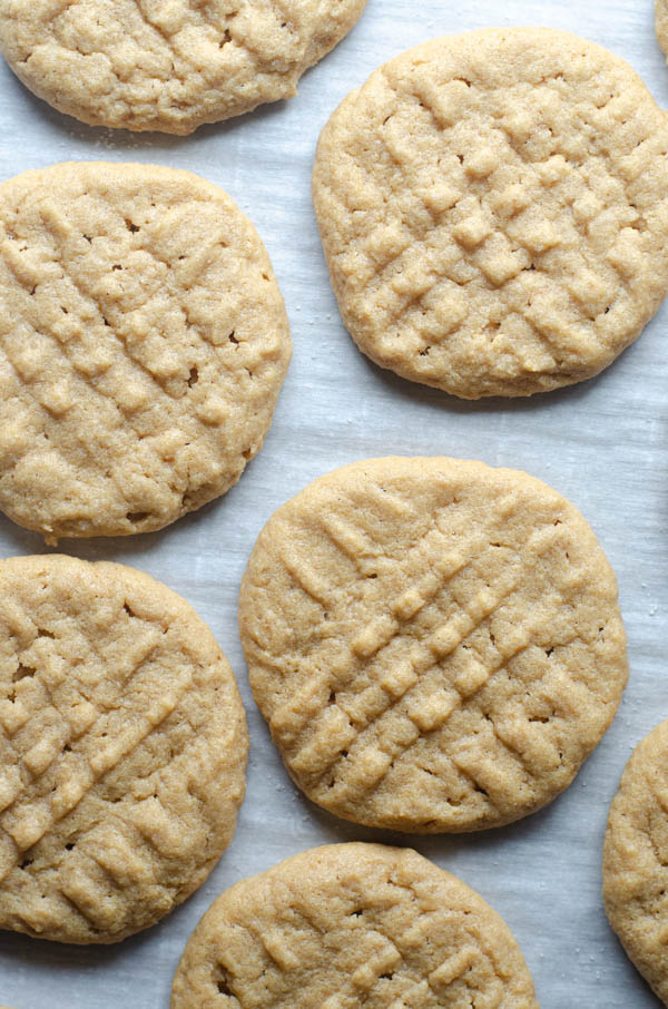 These simple chewy peanut butter cookies are incredibly delicious! They only require one bowl to make, and are sure to please the entire family. Sugar-free, low-carb, keto, gluten-free, dairy-free.