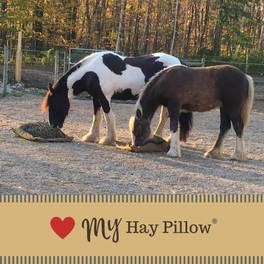 Hay Pillow  Slow Feed Hay Bags  Nets  Best for Ground