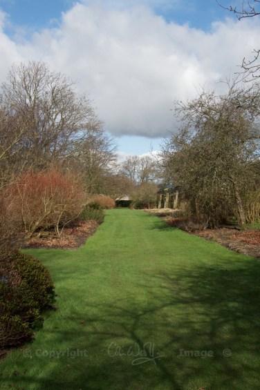 Falkland Garden 2