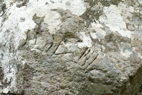 Carvings on stone at Dunadd