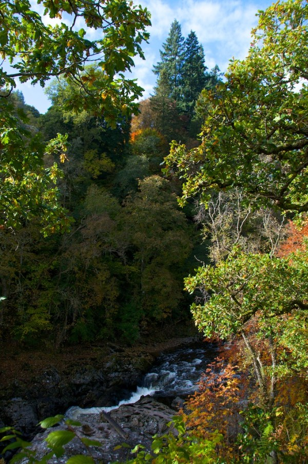 Killiecrankie Autumn (4)