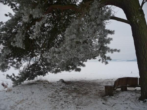 Loch Leven, frozen 31