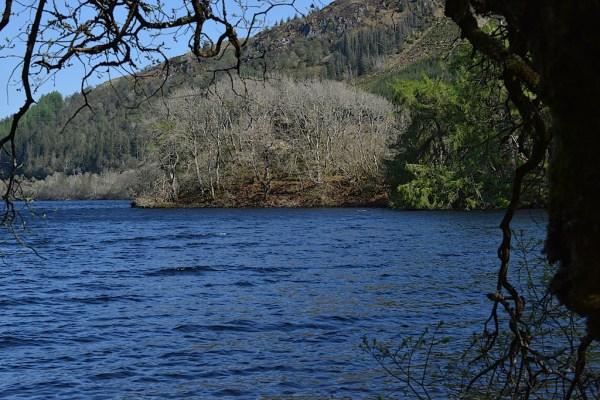 Castle Loch Avich CW 7