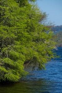 Loch Avich JW 16