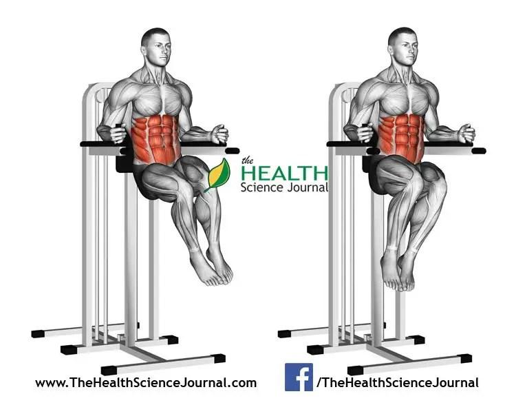 © Sasham   Dreamstime.com - Exercising for bodybuilding. Oblique Raises on Parallel Bars