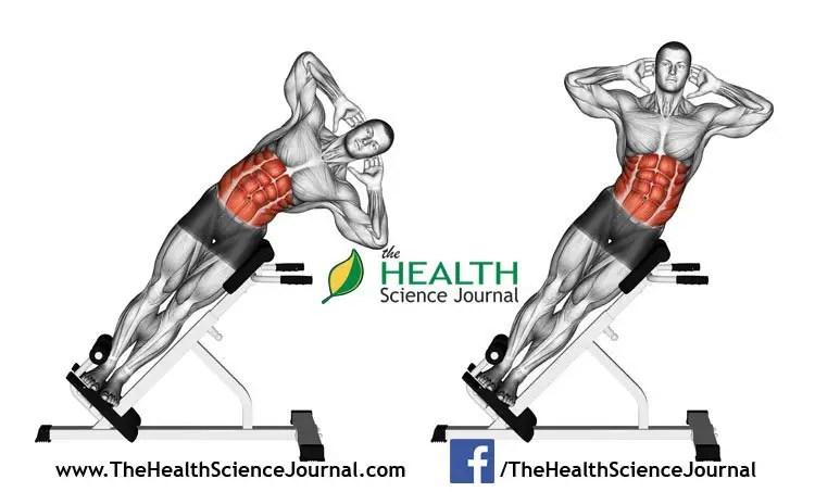 © Sasham   Dreamstime.com - Exercising for bodybuilding. Side Bend on Bench