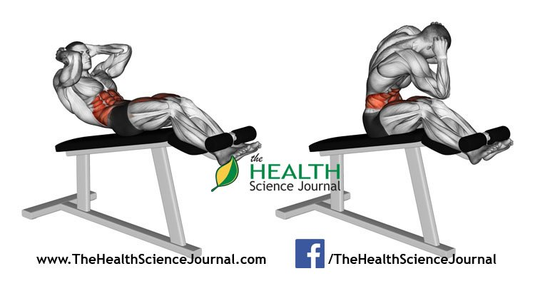 © Sasham   Dreamstime.com - Exercising for bodybuilding. Twisting to turn on the Roman chair