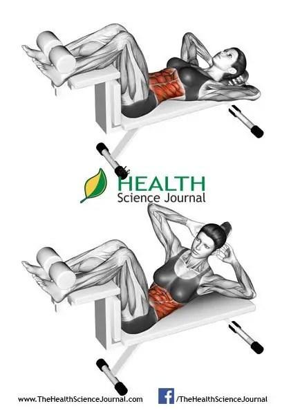 © Sasham   Dreamstime.com - Fitness exercising. Crunch Bench. Female