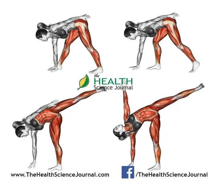 © Sasham   Dreamstime.com - Yoga exercise. Half Moon Pose. Ardha Chandrasana. Female