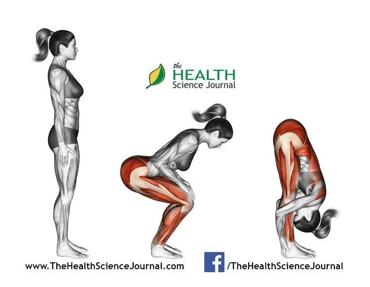 © Sasham   Dreamstime.com - Yoga exercise. Standing Forward Bend. Uttanasana. Female