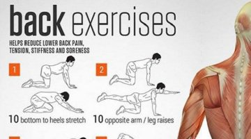 5 Minute Stretching Routine for a Lifelong Healthy Back (Video)