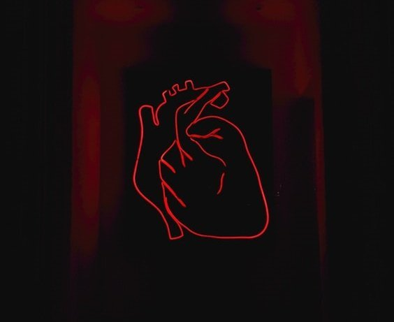 unsplash drawing human heart neon