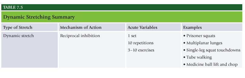 NASM Study Guide Chapter 7 – Flexibility Training Concepts | The