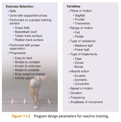 Plyometric Workout Challenge: Plyometric Workout For Basketball