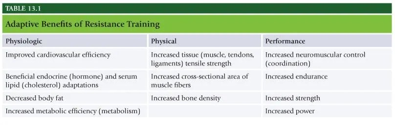 NASM Chapter 13 - Resistance Training Concepts - The Healthy