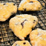 Blueberry Protein Scones