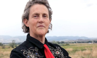 temple grandin the autistic brain