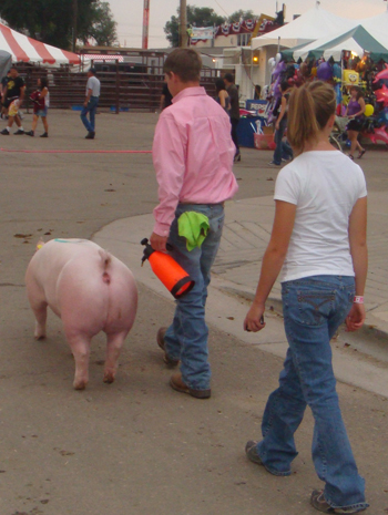 Brother and sister Trey and Taylor Morris of Meeker were among the RBC participants at Colorado's state fair.