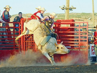 Kody Pierce rides at  the second annual Rangely Rock-N-Bulls. The event will take place again on Sept. 1 as part of Rangely's Septemberfest celebration.