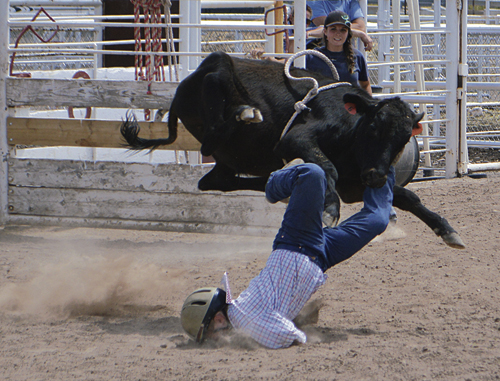Some days go better than others, but Connor Blunt's day got extra tough in front of the spectators at the Li'l Buckaroo Rodeo on Saturday afternoon. Blunt did a face plant into the dirt in the middle of the arena during the rodeo's calf riding event, which was part of the annual Rio Blanco County Fair.