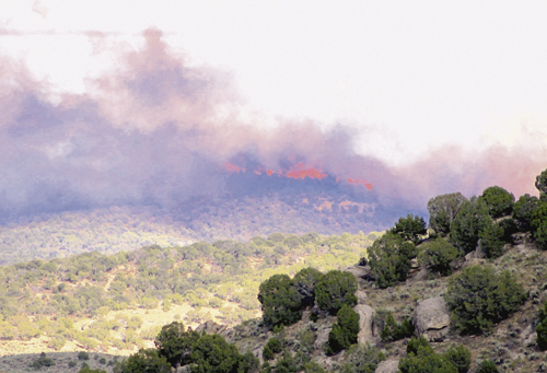 It appears that lightning started the LTE Four-Mile Fire on July 5, located about 8 miles south and east of Rangely. As of Tuesday morning, the U.S. Forest Service reported that the fire had burned 415 acres of brush and was 100 percent contained.