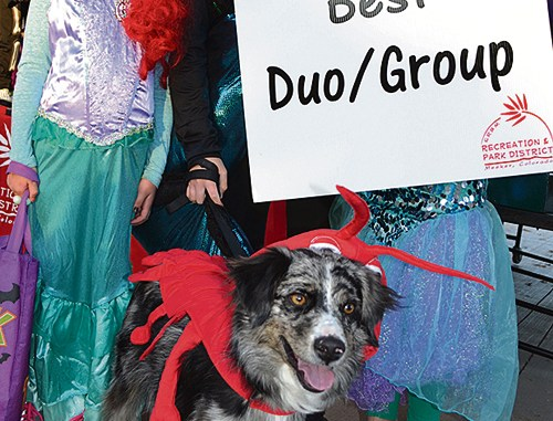 Best Duo/Group: Under the Sea group (left to right) Althea Halstead, Katie Lockwood, Emma Luce, and Izzi the pup.