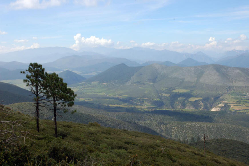 Nuevo Leon Mexico