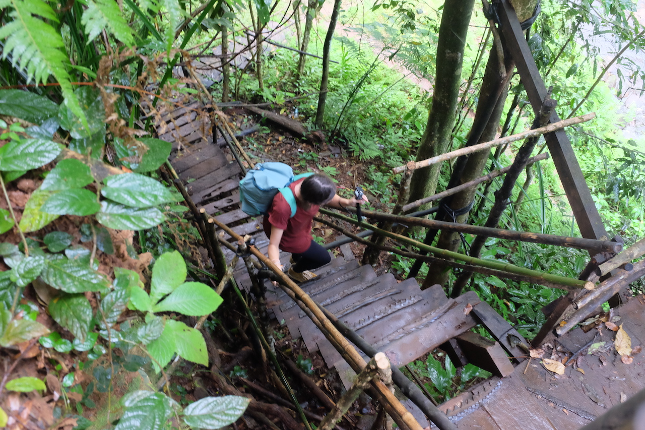 Slippery stairs in the Lao jungle (Bolaven Plateau, Laos)