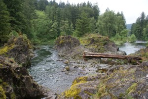 clark county hiking with kids east fork lewis river