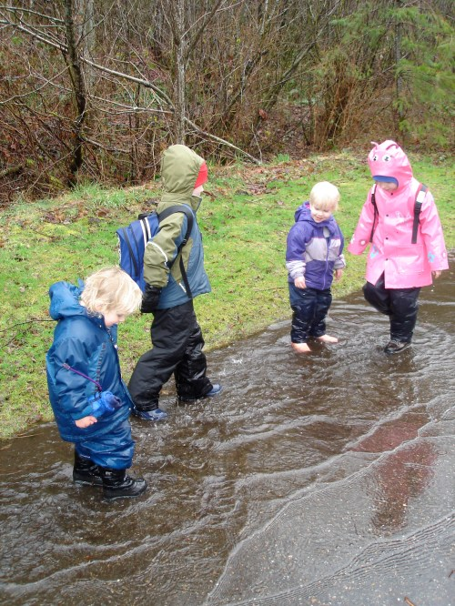 cedar river watershed education center, rattlesnake lake, rainy hikes, hiking with children