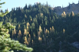 north cascades hikes, fall colors