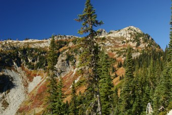 fall colors, north cascades hiking