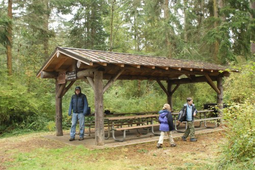 whidbey island picnic area, kids in nature