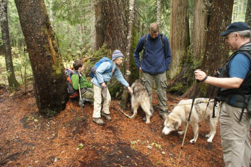 hiking with children, kid on the trail, olallie lake hike, kids in nature