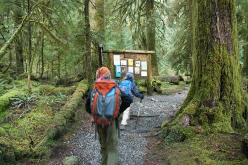 hiking with children, Lake 22, kids in nature, old growth forest, mountain loop highway