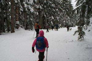 Gold Creek Snowshoe, snow shoeing with children, kids winter sports