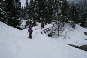snowshoeing washington with kids, winter hiking