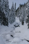 smithbrook road snowshoe, stevens pass, winter hiking