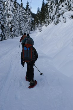 Snowshoeing with kids, children in the woods, Smithbrook Road, winter hiking