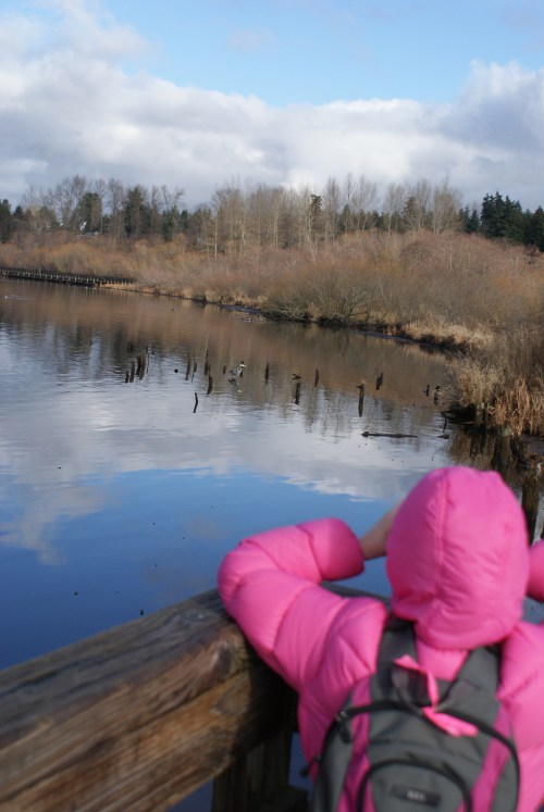 birding with children, kids bird watching, kids in nature, juanita bay park