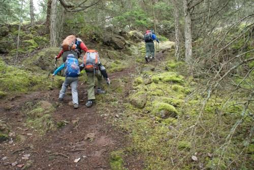 hiking with children, kids on the trail, washington park, anacortes