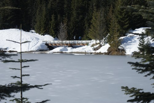 snowshoeing, winter hikes, gold creek, snoqualmie winter hiking
