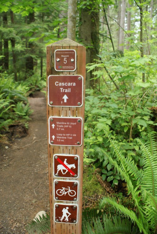 paradise valley conservation area, hikes with kids
