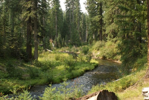hamaker campground, camping with kids, southern oregon tourism