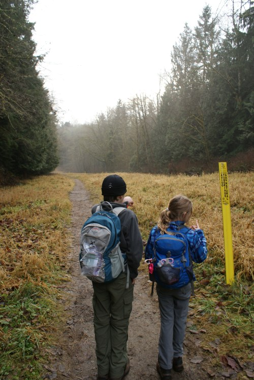 hiking with kids, winter hikes, snohomish, washington hiking