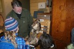 washington birds, raptors, rockport SP