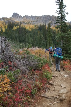 north cascades, fall colors, blue lake trail, larches